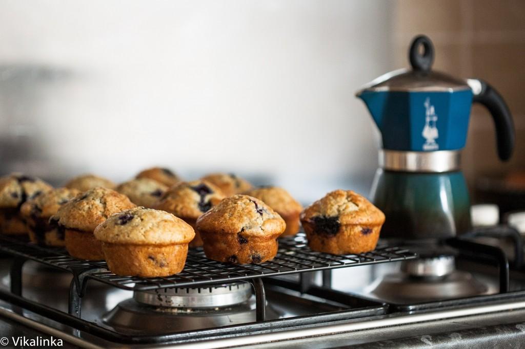 Lemon Blueberry Muffins @Vikalinka