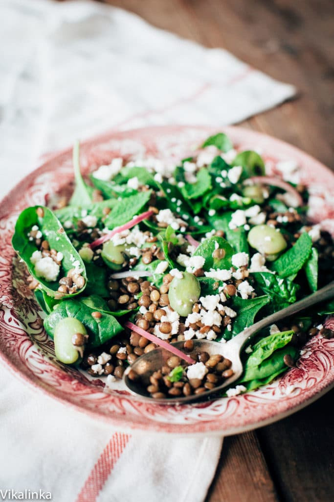 This Lentil and Broad Bean Salad with Honey Vinaigrette and Feta makes for a light and flavourful side or a beautiful lunch!