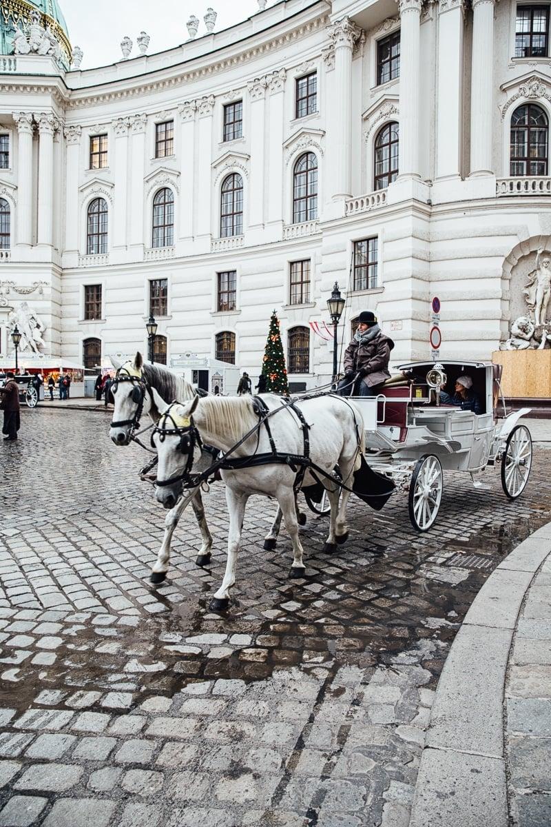 Visit to Vienna