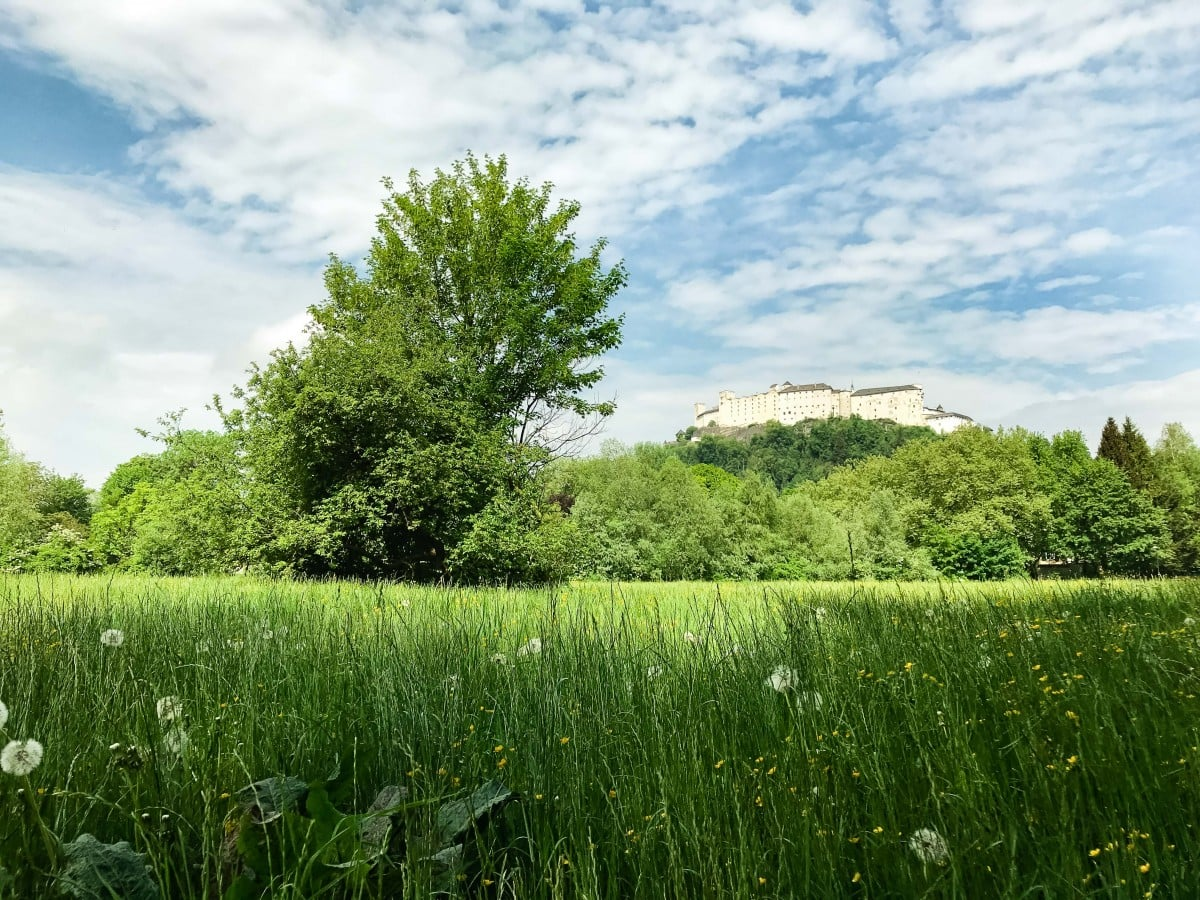 View of Hohensalzburg Castle from a field outside of Salzburg