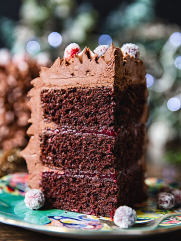 Christmas Chocolate Cake with Cranberries