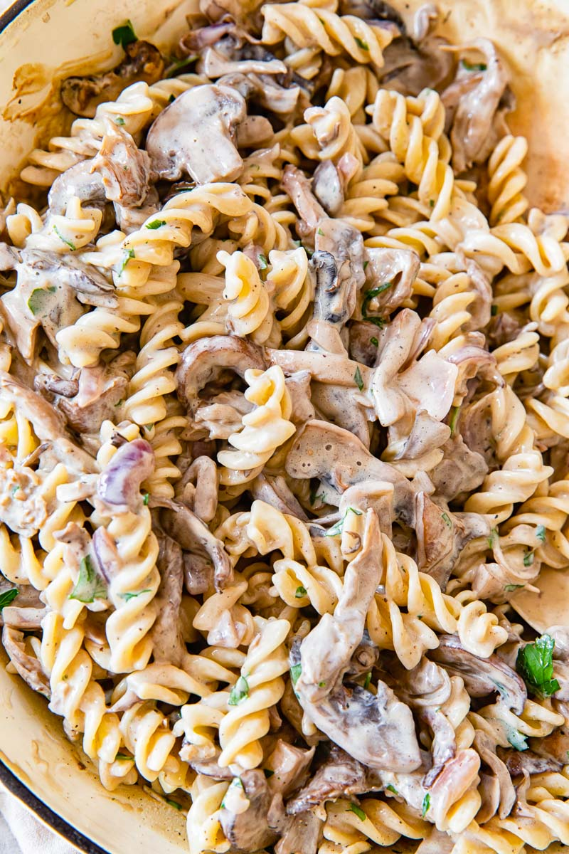 Mushroom Stroganoff recipe closeup