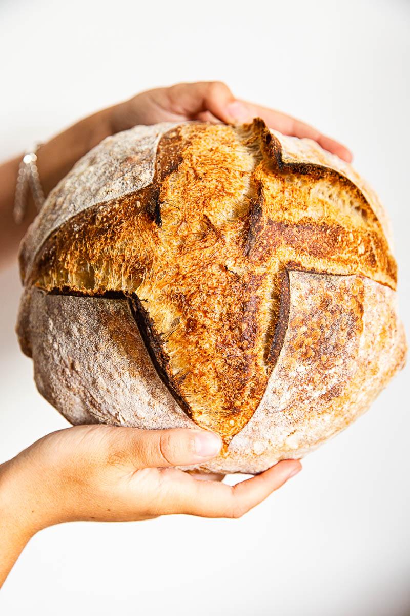 sourdough bread crust