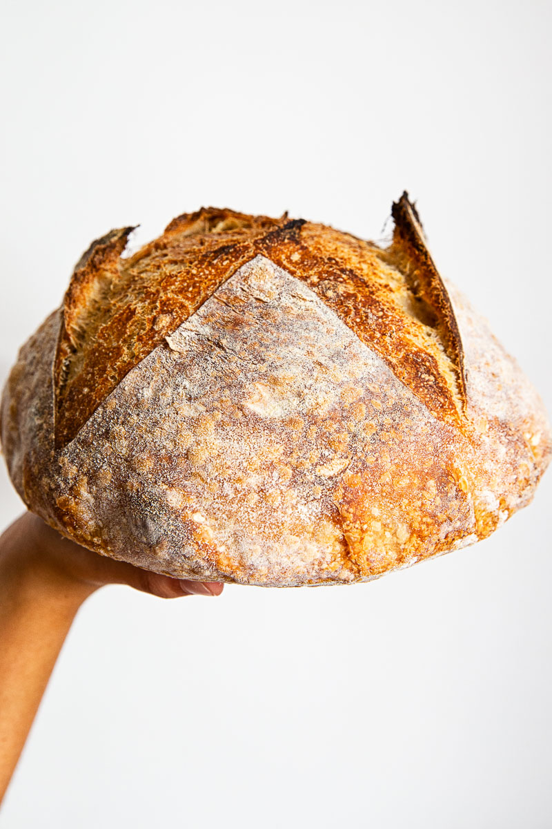 bread is rested on the palm of a hand