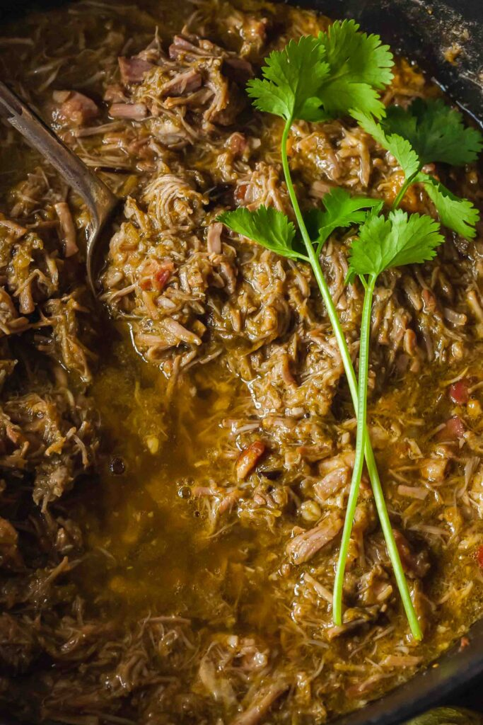 chile verde topped with fresh cilantro sprigs