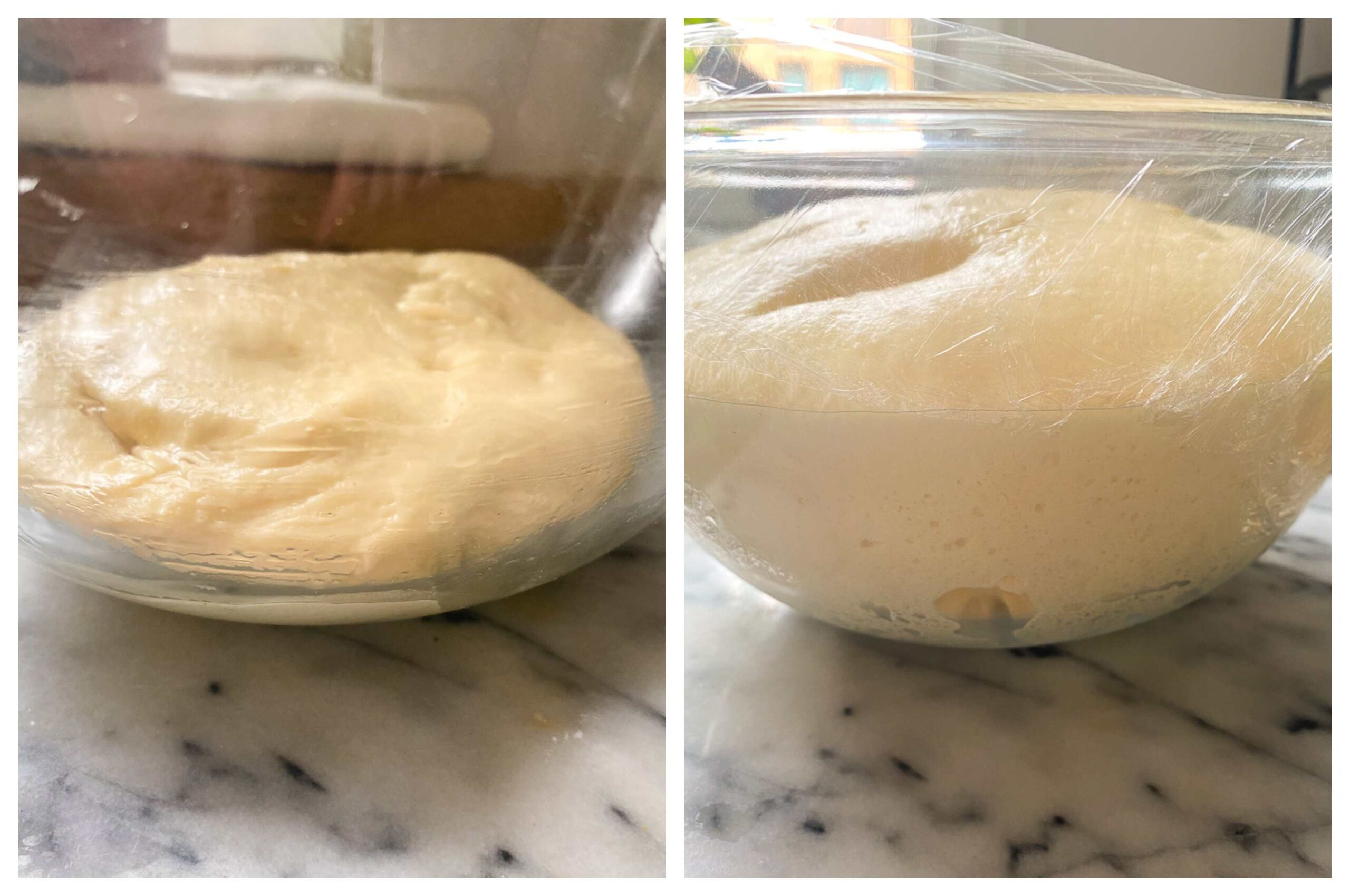 stages of dinner roll dough proofing